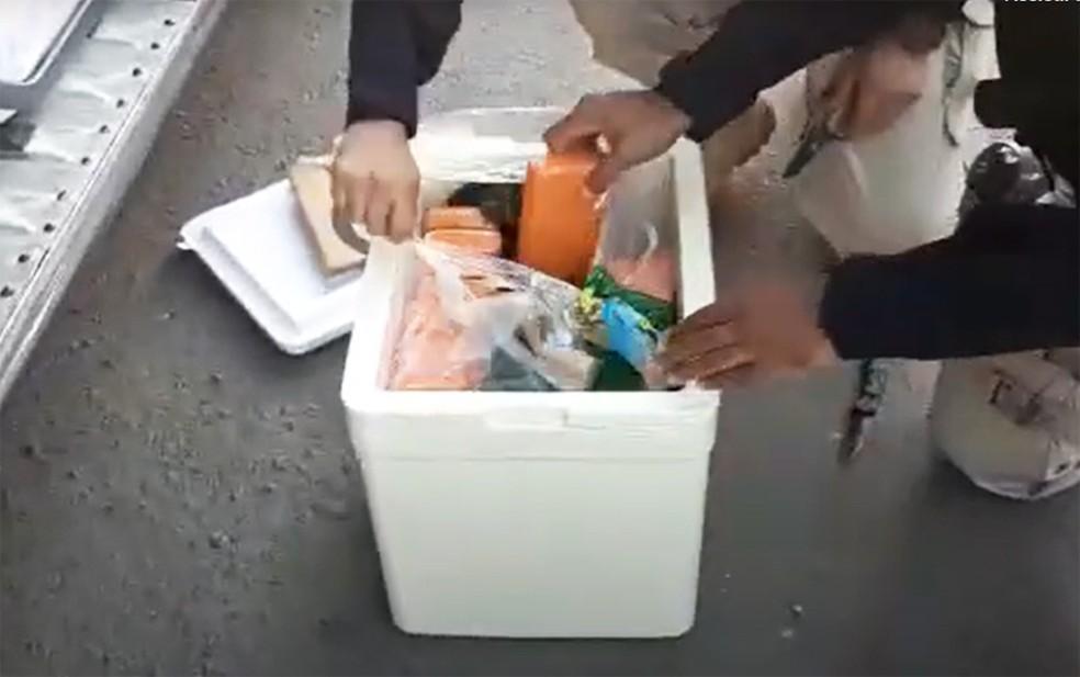 Parte da droga estava em caixas de isopor — Foto: Divulgação/PRF