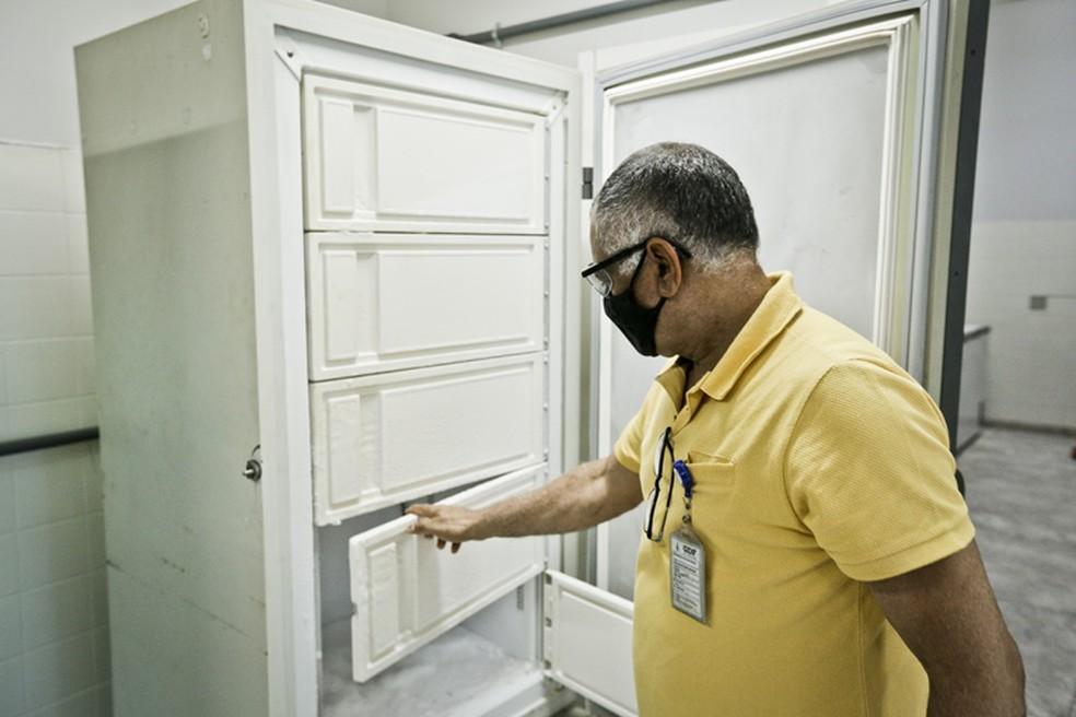 Freezer de armazenamento na Rede de Frio do DF — Foto: Breno Esaki/Agência Saúde-DF
