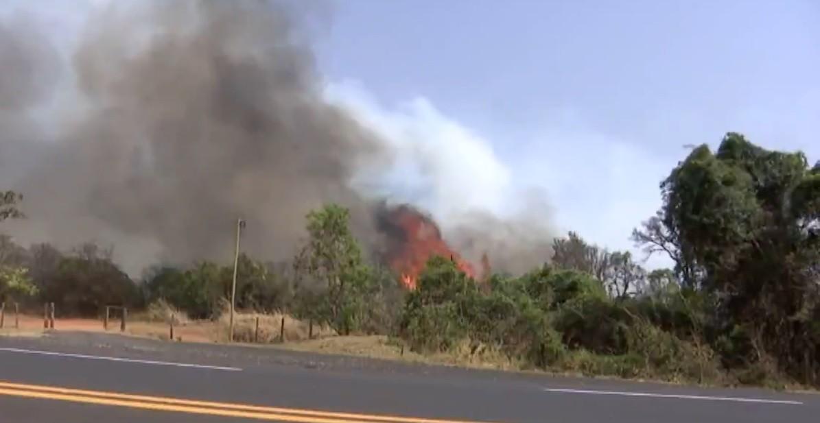 Incêndio na Reserva do Panga segue pelo terceiro dia em Uberlândia