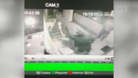 Gata sobrevive após ser jogada do 4º andar de prédio em SP; vídeo