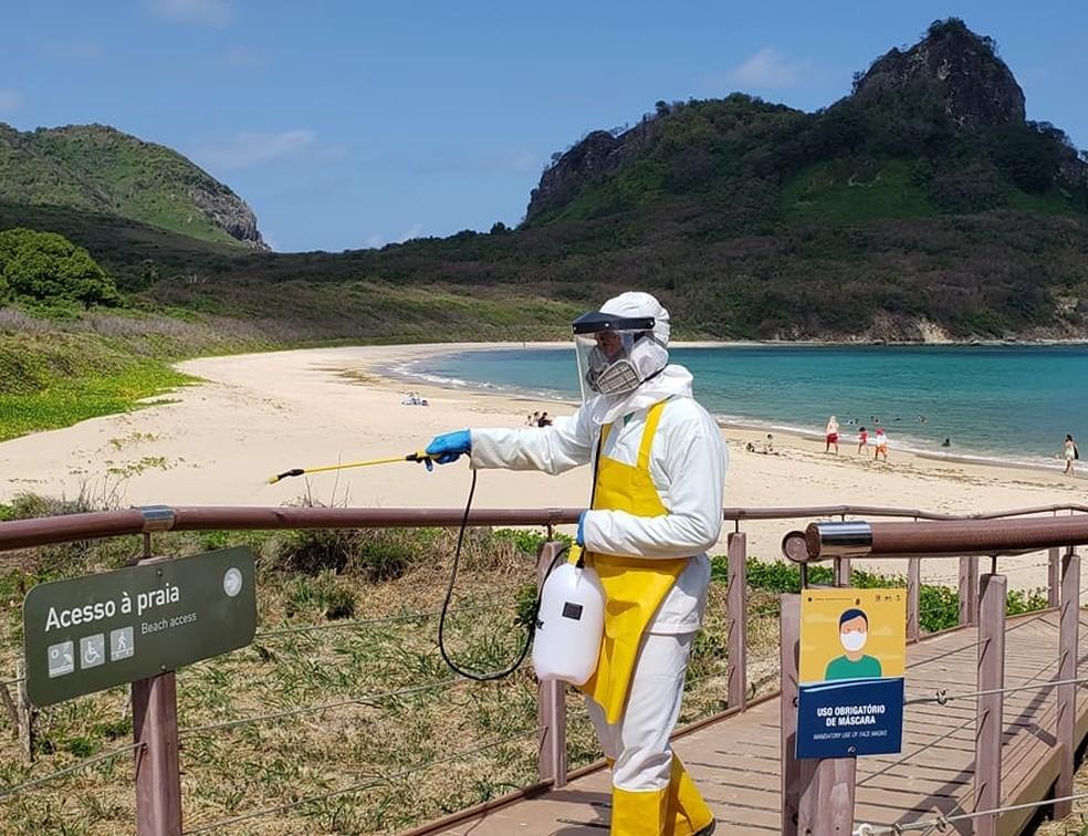 A higielização é feita na área do Parque Nacional Marinho — Foto: Ana Clara Marinho/TV Globo