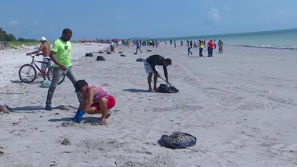 Voluntários removem óleo de praia na Ilha de Itamaracá, no Grande Recife — Foto: Reprodução/TV Globo