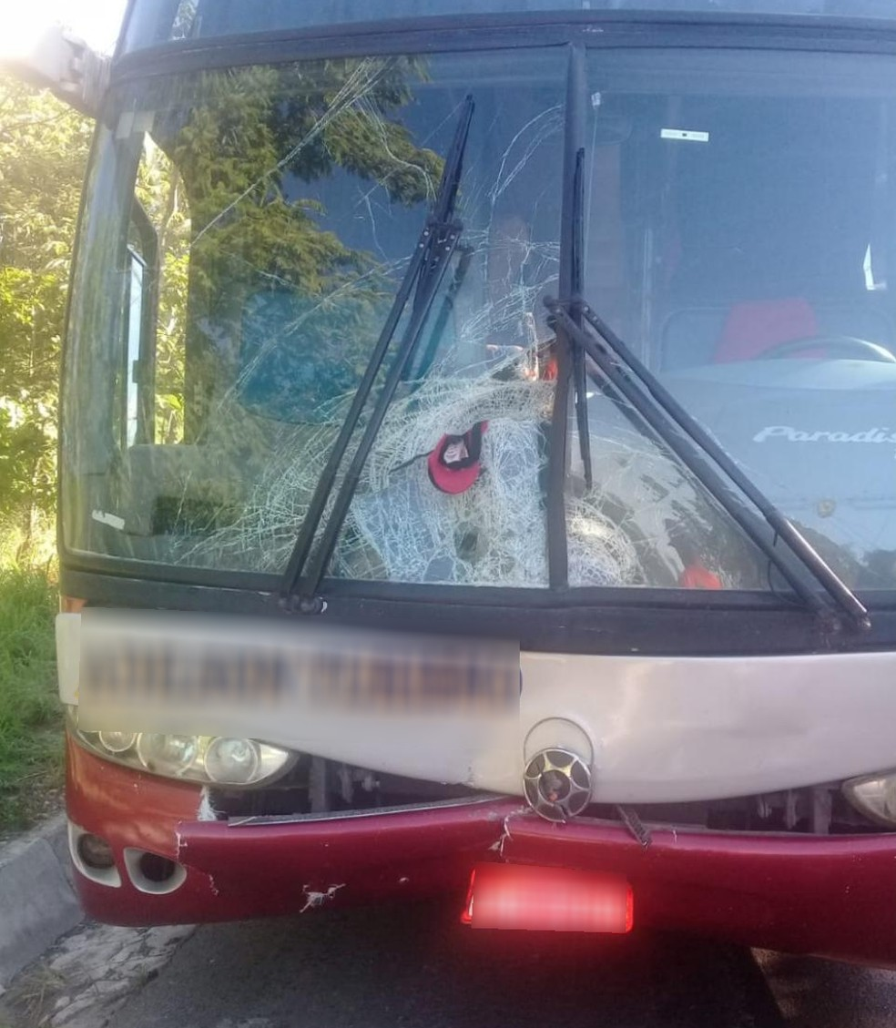 Ônibus que atropelou o funcionário pertence a uma empresa de turismo  — Foto: Polícia Militar Rodoviária/Divulgação