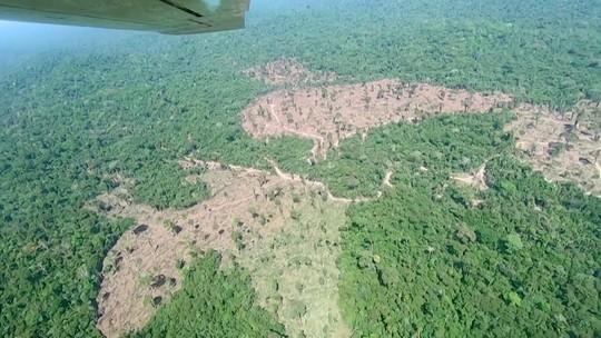 GloboNews Especial mostra áreas de desmatamento na Amazônia