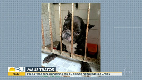 Polícia fecha canil clandestino no Grajaú