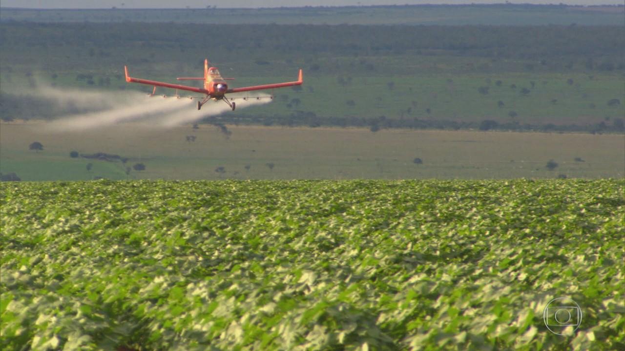 O ano de 2020 bate recorde de liberação de agrotóxicos e componentes industriais