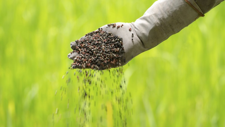 fertilizante_insumos_agricolas (Foto: Thinkstock)