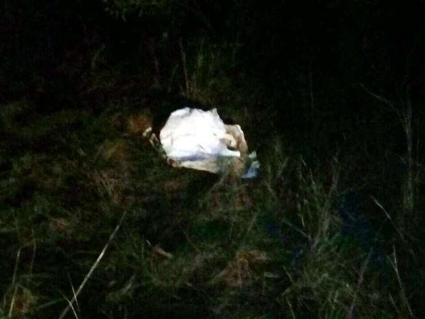 Corpo da menina estava em saco plástico, dentro de uma caixa de papelão usado para mudança (Foto: João Paulo Rezende/Clique F5)