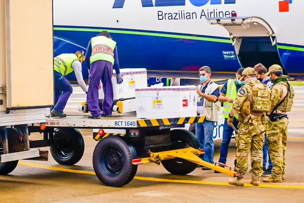 Voo que trouxe vacinas de Oxford/AstraZeneca chegou ao Maranhão por volta das 13h38 deste domingo (24). — Foto: Karlos Geromy/Governo do Maranhão