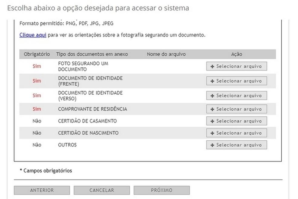 Documentos necessários para regularização do título de eleitor no Titulo Net — Foto: Reprodução/Raquel Freire