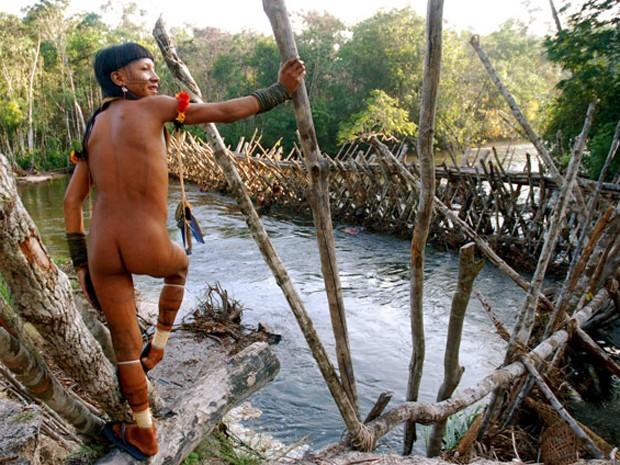 81 mil indígenas estão em situação de vulnerabilidade crítica em caso de exposição a Covid-19, diz estudo