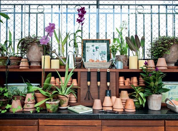 bancada-degranito-para-cuidar-de-orquídeas (Foto: Lilian Knobel/Editora Globo)