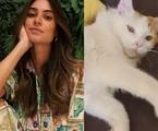 Thaila Ayala e o seu gato | Reprodução