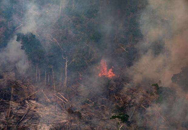 As queimadas na Amazônia têm sido destaque mundial (Foto: Getty Images)