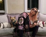 Sequestradores não sabiam que cães eram de Lady Gaga, revela polícia