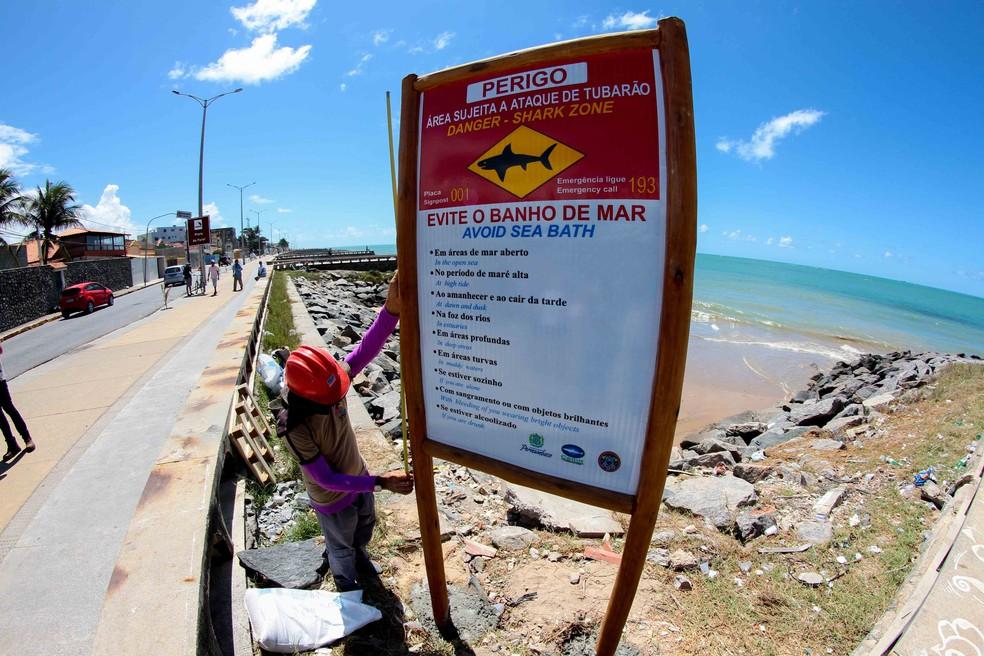 Grande Recife recebeu novas placas de alerta contra tubarões em 2016 (Foto: Marlon Costa/Pernambuco Press)