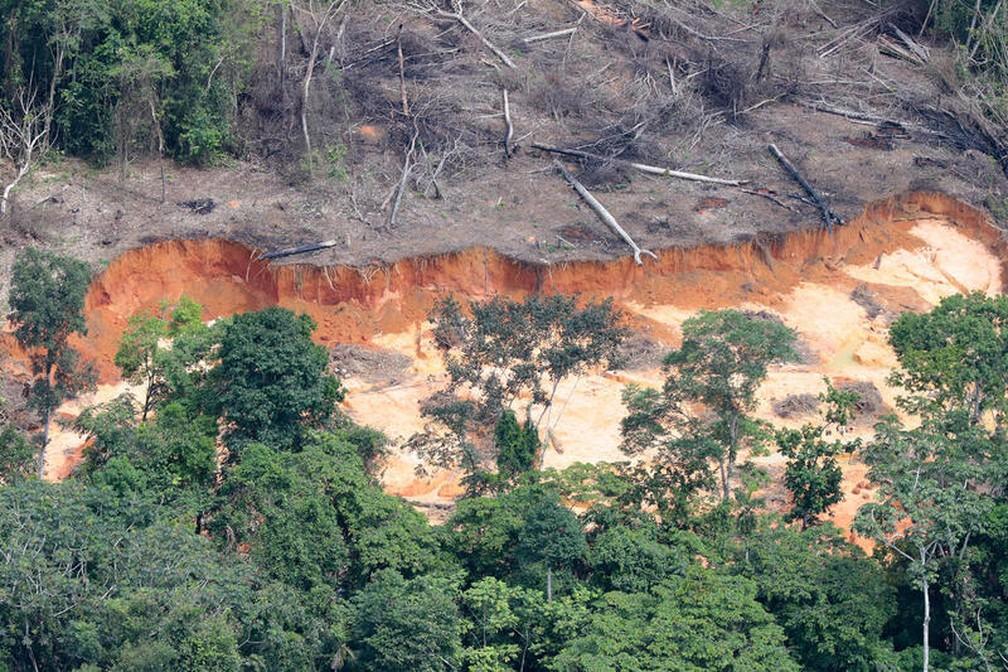 Garimpo na terra indígena Munduruku, no Pará, em maio de 2020. — Foto: Greenpeace