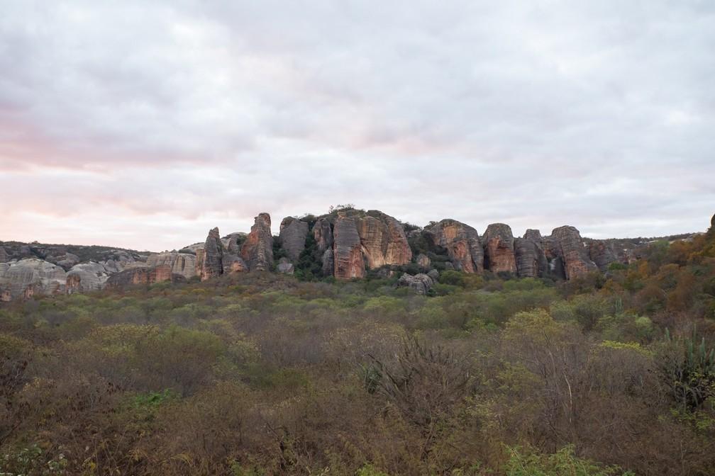 Área preservada da caatinga no Parque Nacional da Serra da Capivara. — Foto: Celso Tavares/G1