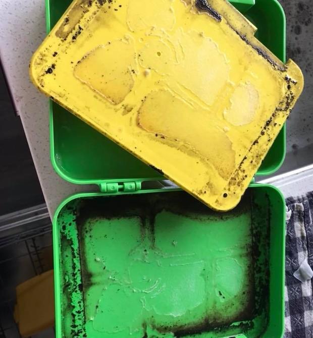 Vale lembrar que é preciso limpar a lancheira das crianças diariamente (Foto: Reprodução Facebook)