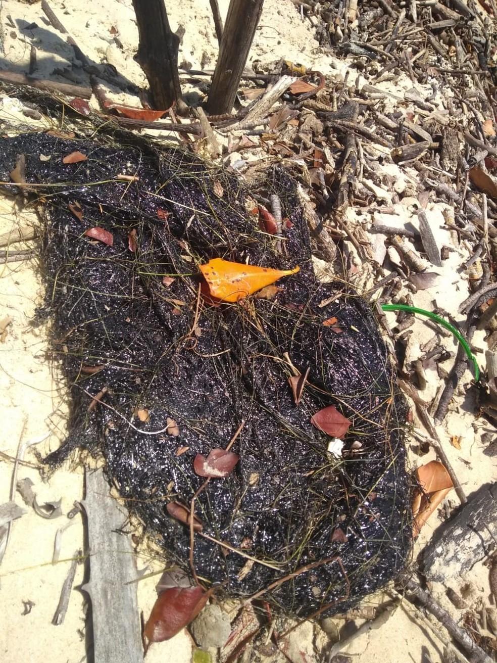 Mancha de óleo foi achada em Cajueiro da Praia, litoral do Piauí.  — Foto: Divulgação/Instituto Tartarugas do Delta