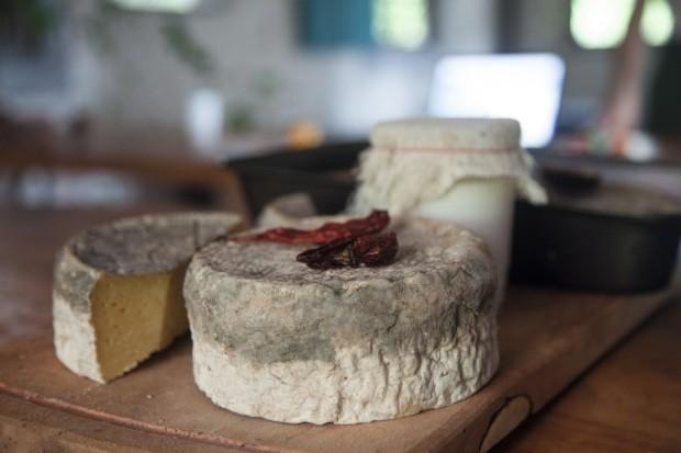 Autodidatas. Do queijo curado aos cuidados com os poucos animais que têm na fazenda, Peèle e Yentl aprenderam de tudo um pouco em suas andanças mundo afora (Foto: Mayra Azzi / Editora Globo)