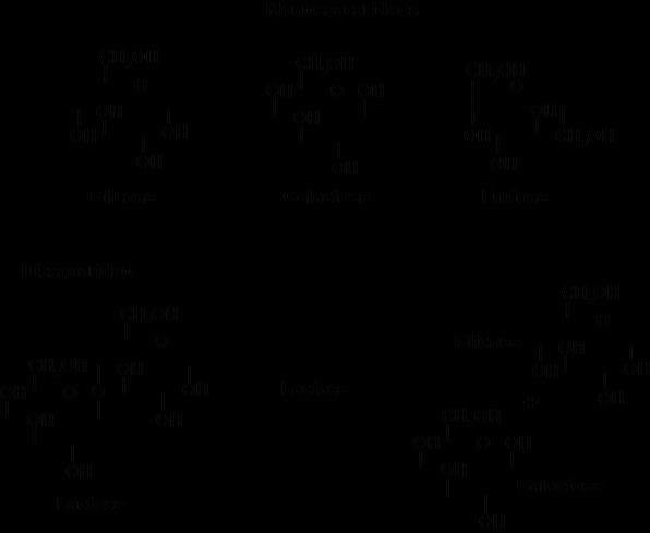 Os carboidratos, também conhecidos como açúcares, podem ser do tipo monossacarídeos, como a glicose, galactose e frutose (no topo da imagem). A união de dois monossacarídeos por uma ligação glicosídica, resulta na formação de um dissacarídeo, como a lactose (mais abaixo na imagem). Para que carboidratos possam ser absorvidos no intestino, enzimas como a lactase, devem romper a ligação glicosídica, liberando novamente os monossacarídeos.