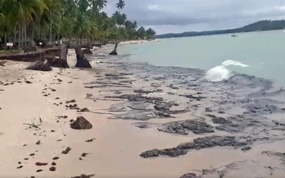Óleo chegou a Praia dos Carneiros, em Tamandaré, no Litoral Sul de Pernambuco, nesta sexta-feira (18) — Foto: Reprodução/WhatsApp
