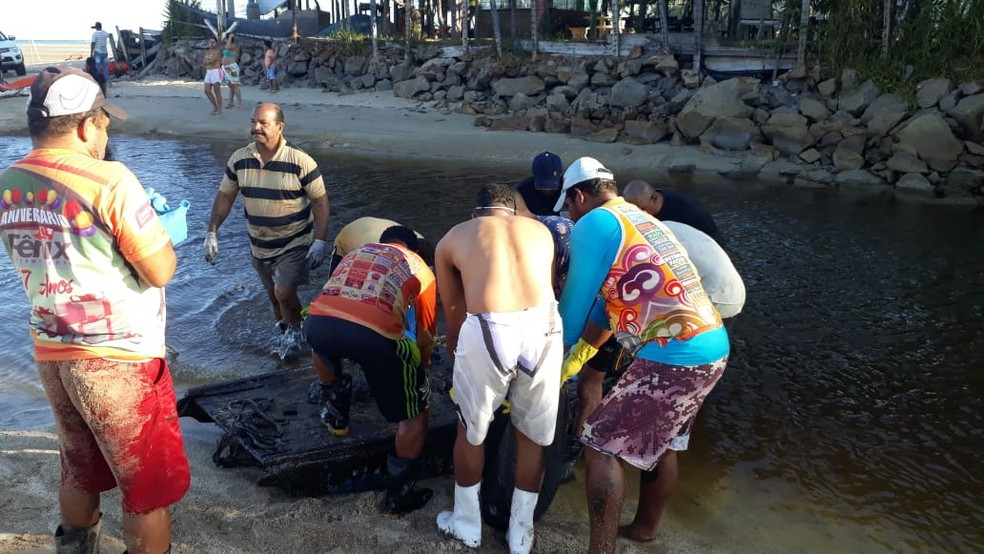 Voluntários retiram óleo em São José da Coroa Grande, no Litoral Sul de Pernambuco — Foto: Antonio Coelho/TV Globo