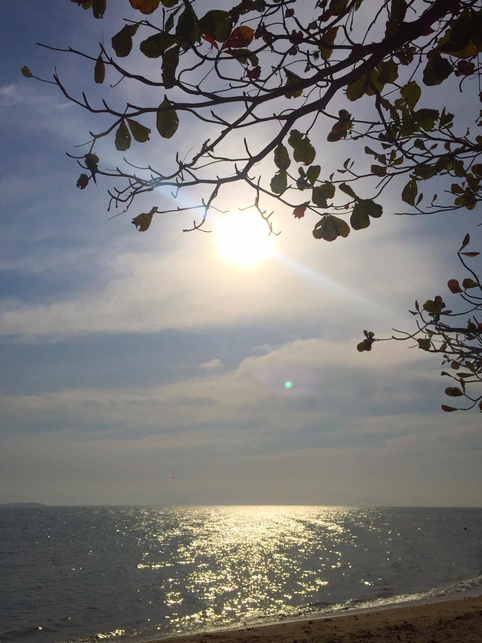Domingo tem previsão de sol entre nuvens e temperaturas elevadas em SC - Notícias - Plantão Diário