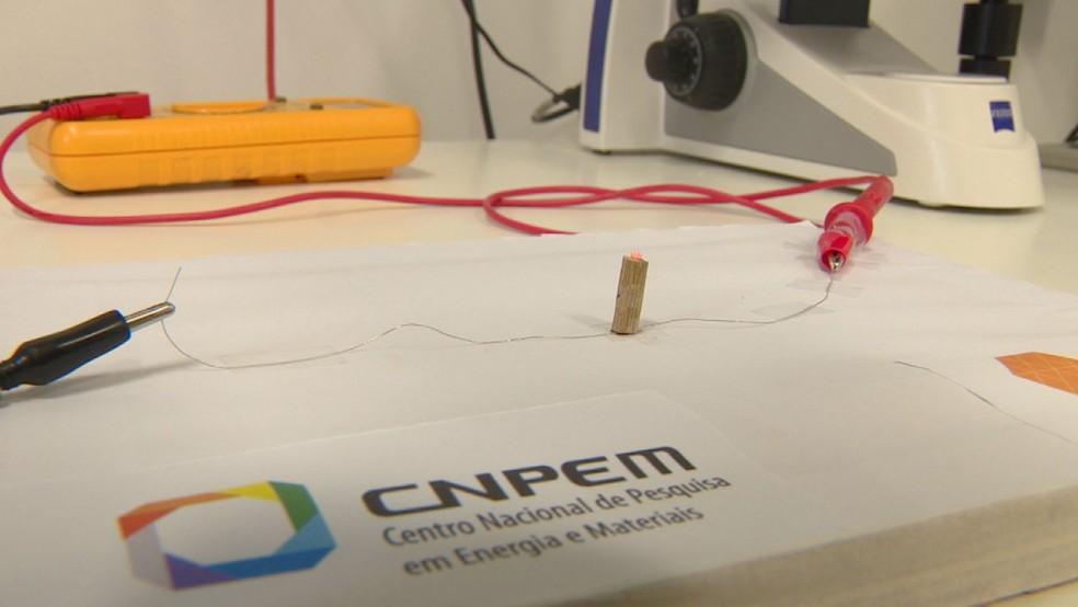 CNPEM, em Campinas, descobre bambu como condutor de eletricidade sustentável. — Foto: Reprodução/EPTV