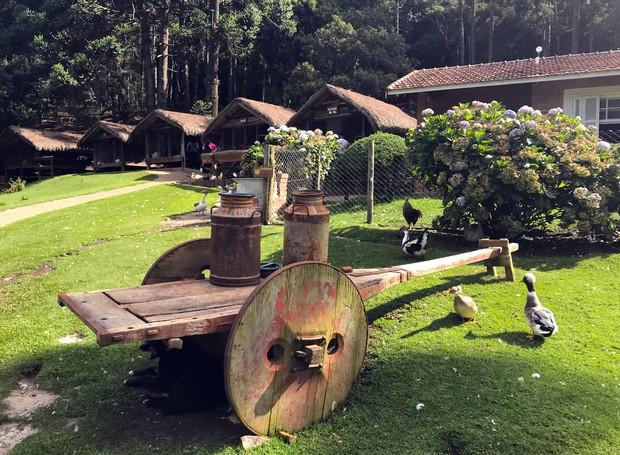 Na Fazendinha Toriba os animais ficam em cabanas ou soltos ao ar livre, para que os visitantes tenham contato direto (Foto: Tali Sanches/ Divulgação)