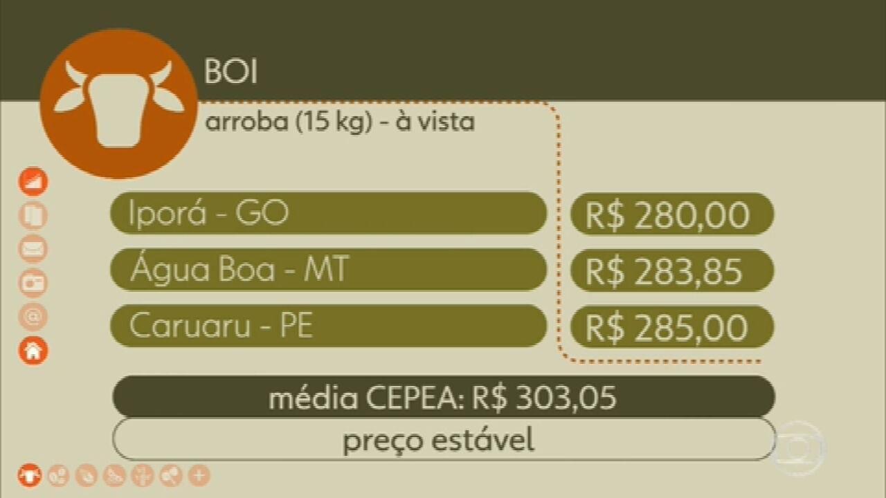 Veja os preços do boi gordo