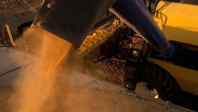 Esmagamento de soja nos EUA cai 6,4% em agosto, diz USDA - Revista ...