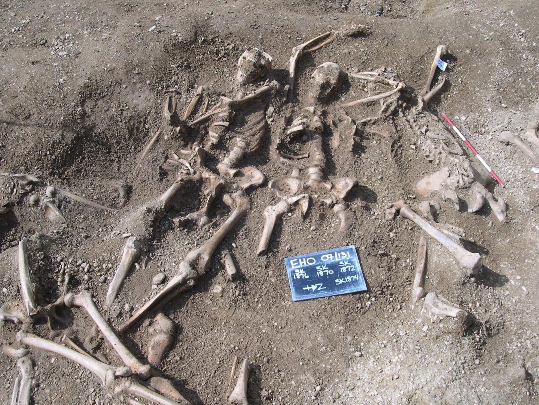Cepas de varíola são encontradas em esqueletos vikings de 1400 anos (Foto: Thames Valley Archaeological Services)