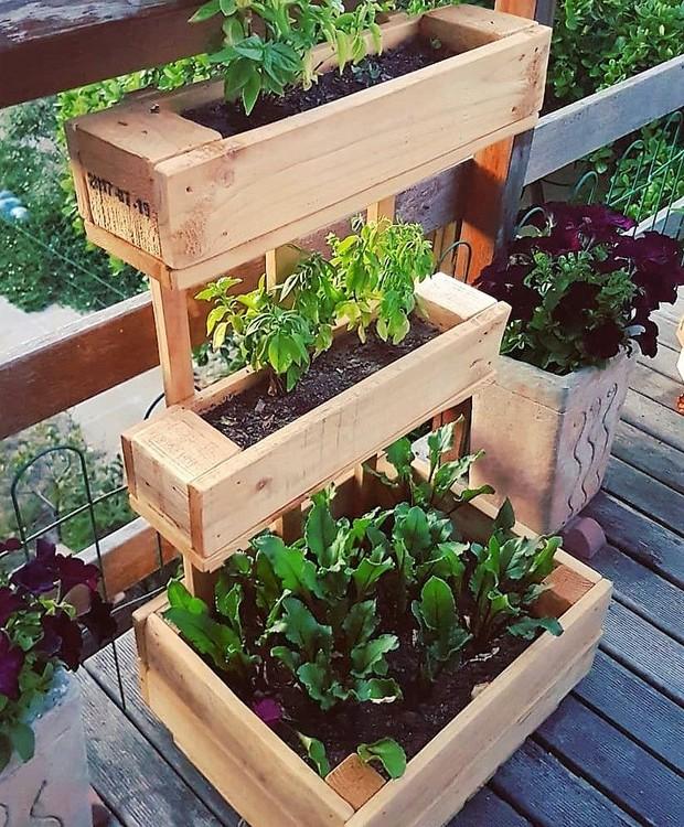 Pallets de madeira são úteis para montar uma horta caseira e decorar a casa com mais verde (Foto: Reprodução/Pinterest)