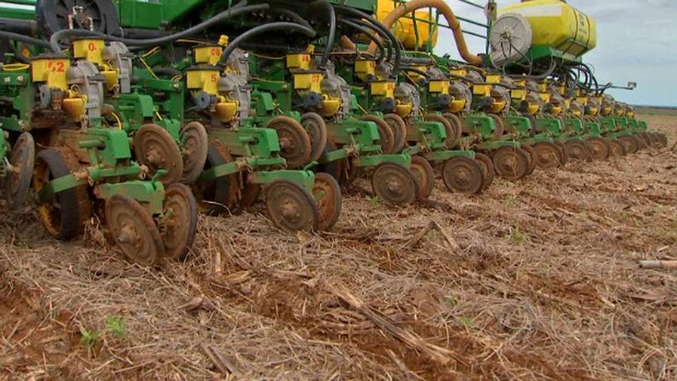 Plantio de soja em MT (Foto: Reprodução/TVCA)