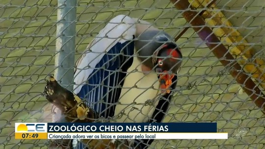 VÍDEOS: Bom Dia Ceará de sexta-feira, 19 de julho