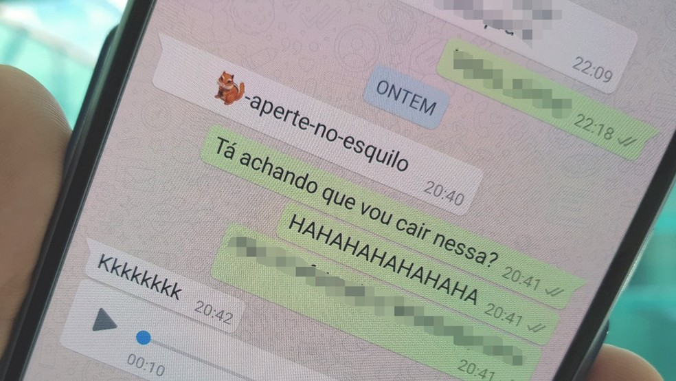 Mensagem com emoji do esquilo causou travamentos no WhatsApp (Foto: Bruno De Blasi/TechTudo)
