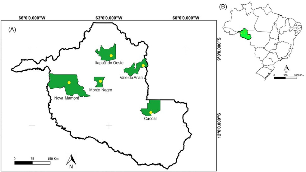 Coleta das novas espécies de insetos transmissores da leishmaniose ocorreu em cinco municípios de RO.  — Foto: Divulgação/Brazilian Journal of Biology