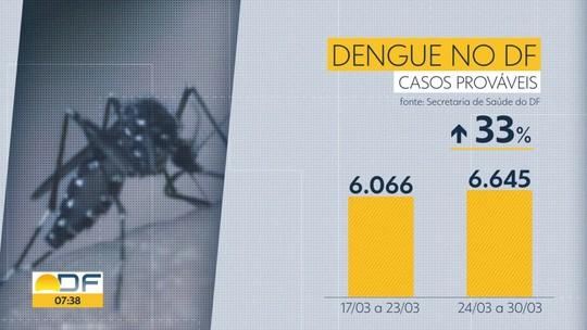 DF tem quase 7 mil casos prováveis de dengue este ano