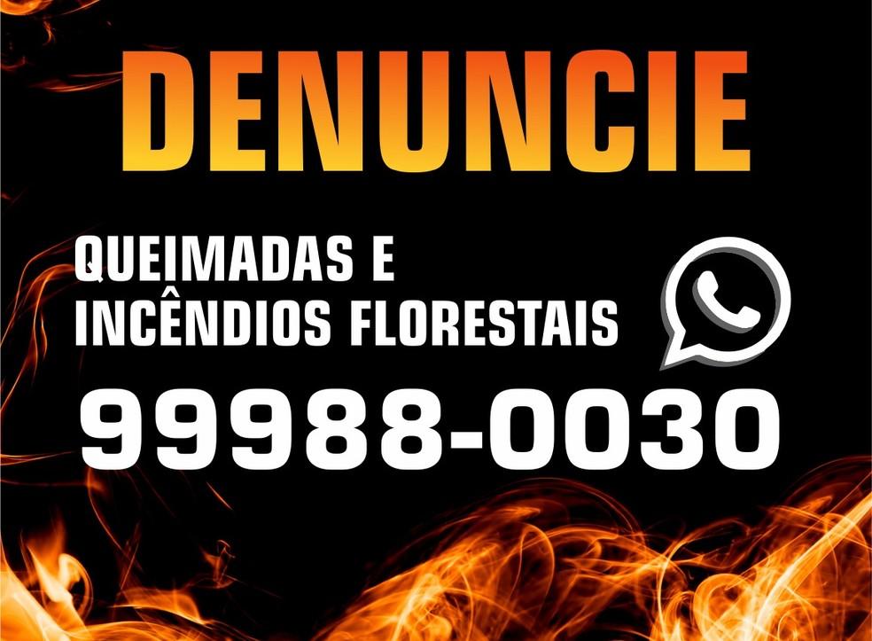 Denúncias poderão ser feitas pelo WhatsApp — Foto: Divulgação