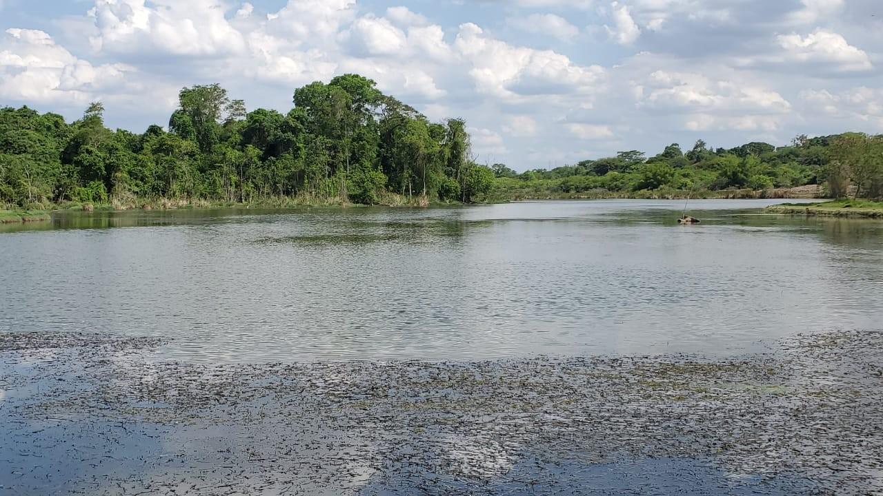 Rodízio de água em Bauru é alterado após nível da lagoa do rio Batalha subir