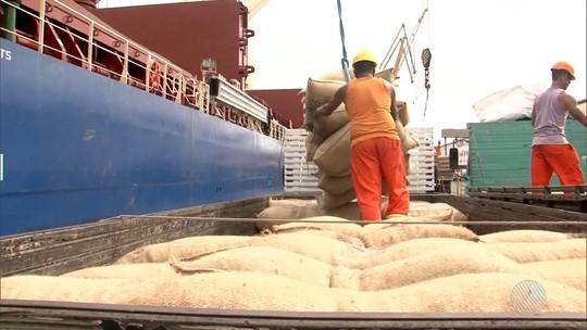 Seca obriga agricultores da região sul a importar cacau de Gana, na África