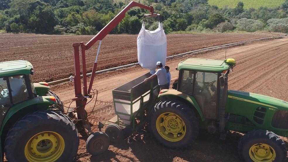 — Foto: Divulgação: AgroCP