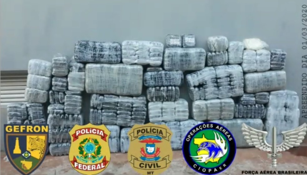 Piloto de avião foi preso com meia tonelada de cocaína escondida em plantação de eucalipto em Mato Grosso — Foto: Sesp