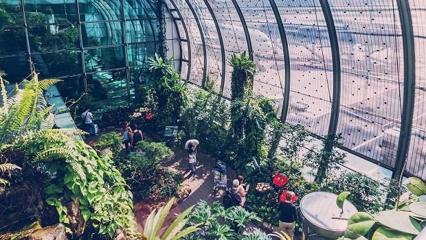 Jardim de borboletas, no aeroporto de Cingapura (Foto: Reprodução/Instagram)