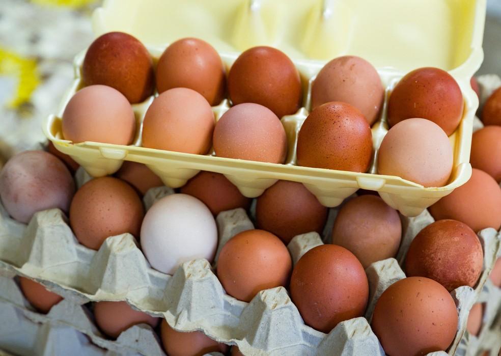 Não existe diferença nutricional entre os ovos de cores diferentes. — Foto: Patrick Pleul/AFP