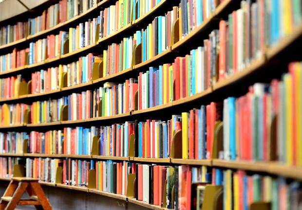 Livros - leitura - estante - biblioteca - ler (Foto: Thinkstock)