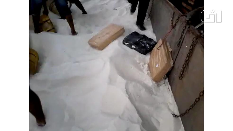 Droga estava embaixo da carga de açúcar em MS (Foto: DOF/Divulgação)