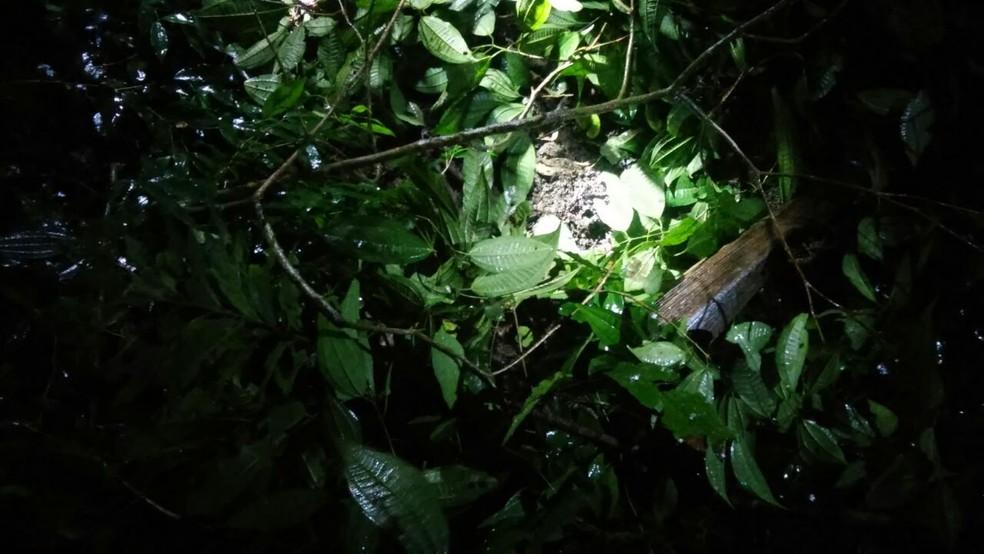 Homem cobriu a cova feita com galhos de árvores (Foto: G1 Santos)